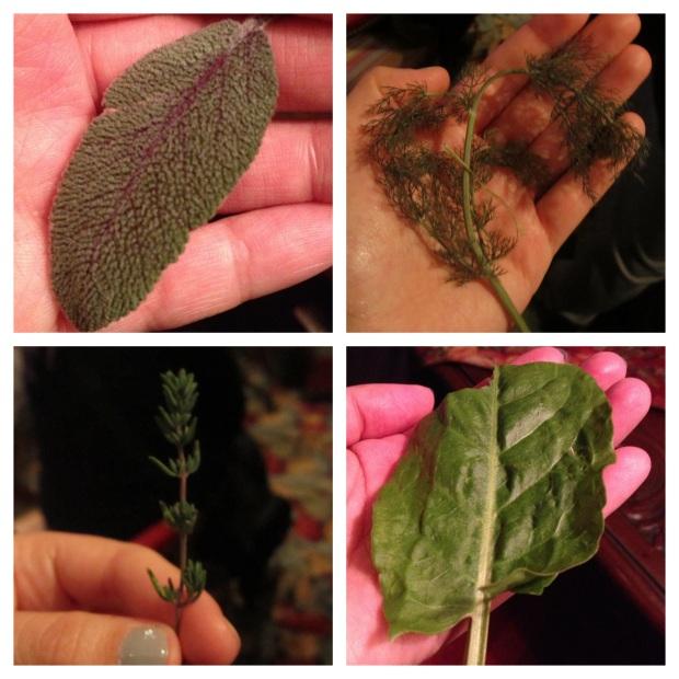Herb testing!